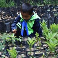 Alumnos del CENDI 6 adoptan un árbol en vivero de Panotla