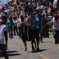 Huamantlada concluye con 9 personas lesionadas: tres de ellas se encuentran delicadas